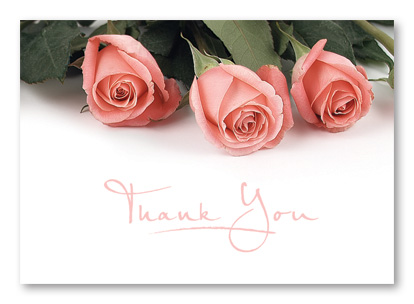 Thank you pink roses